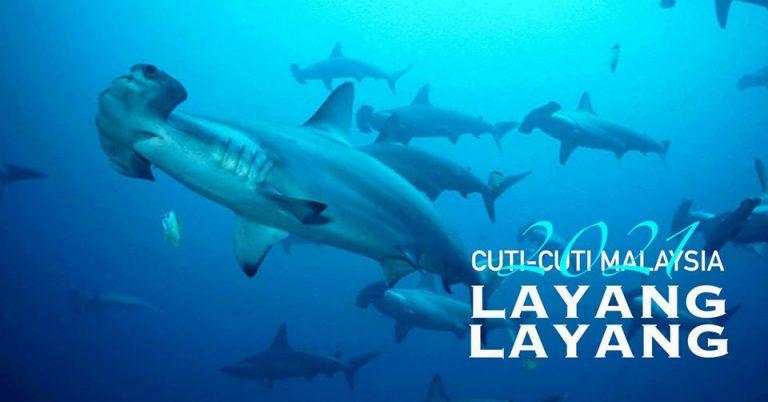 LAYANG - LAYANG (PA: Shark Conservation Specialty)